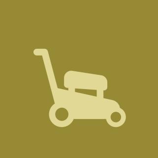 Устройство всех типов и видов газонов