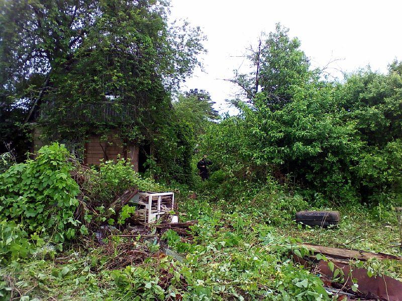 Расчистка земельных участков