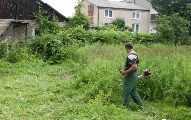 Покос травы на приусадебном участке